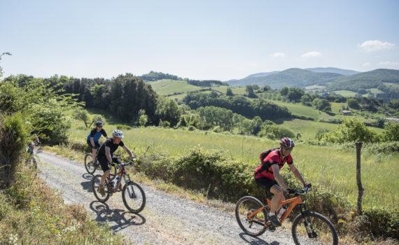 Geführte Biketour organisiert auf Le Canne